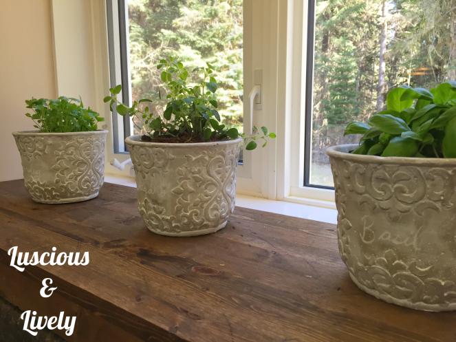 Ceramic pots on distressed wood windowsill
