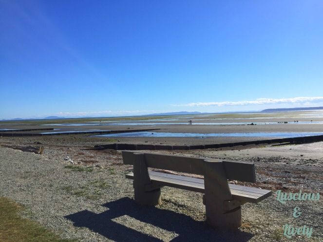 View of Crescent Beach with bench in foreground