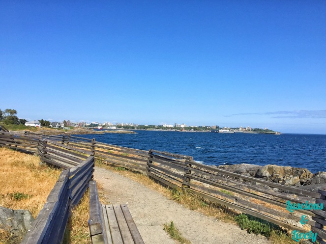 view of the ocean from a fenced pathway